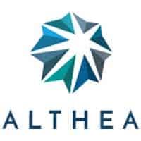 aster-althea